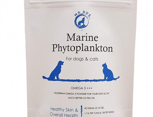 Phytoplankton for Omega-3 Supplement in Pet Diets